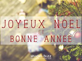 Joyeux Noël et Bonne Année 2016!