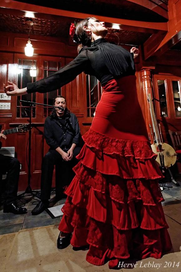 Flamenco Delphine Mantha