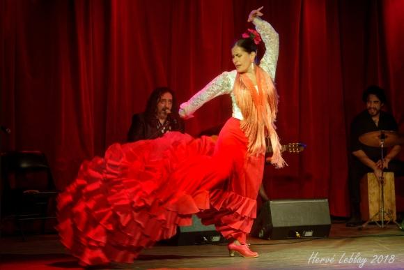 Session Intensive de Bata de Cola avec l'École Flamenco Rosanne Dion