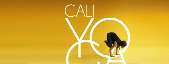 Yoga Vinyasa avec Catherine Cyr